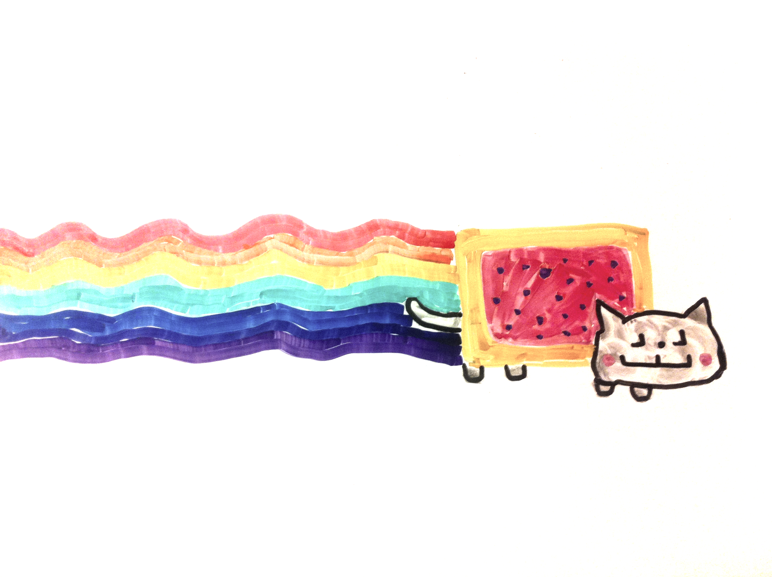 Nyan cat in whiteboard drawing style